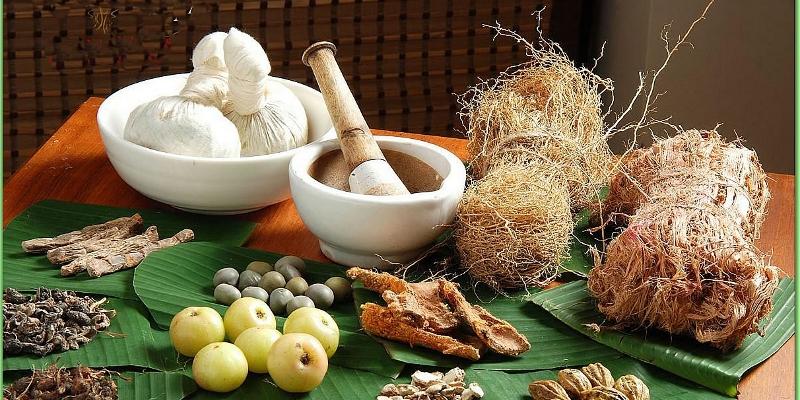 Sembuhkan Penyakit Dengan Obat Herbal
