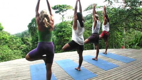 Manfaat Olahraga Yoga Bagi Kesehatan