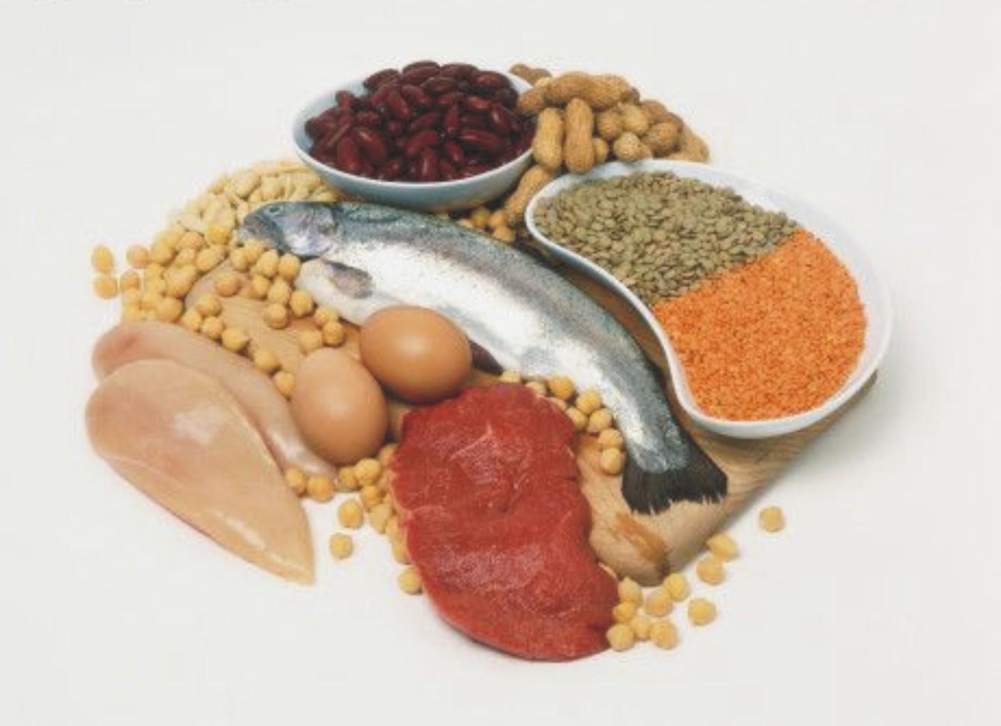 Fungsi dan Contoh Makanan Yang Banyak Mengandung Protein