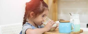 Keuntungan Meminum Susu Tambahan Terbaik